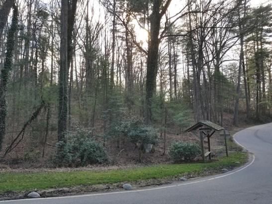 9999  Stuyvesant Road, Biltmore Forest, NC - USA (photo 4)