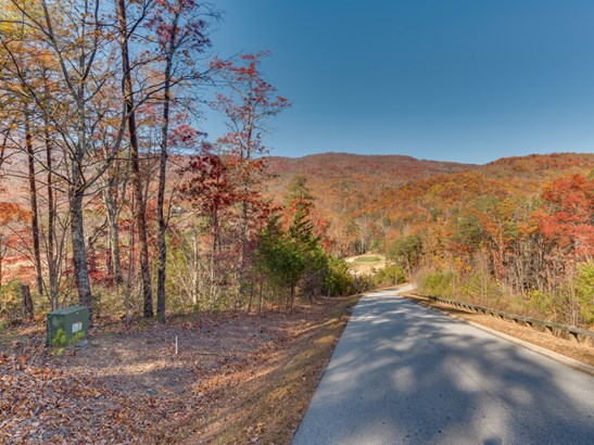 Lot 45  Deep Gap Farm Drive, Mill Spring, NC - USA (photo 1)