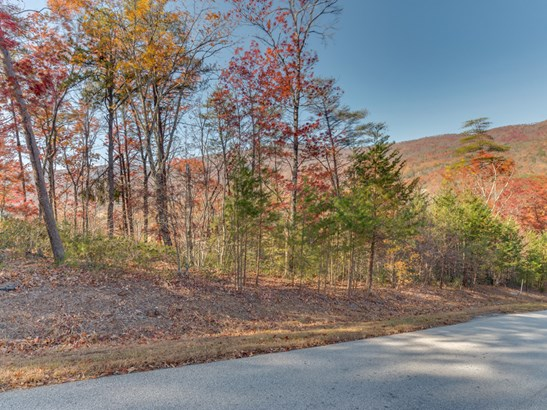 Lot 45  Deep Gap Farm Drive, Mill Spring, NC - USA (photo 2)