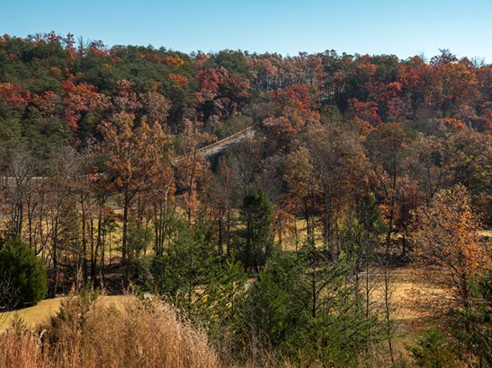 Lot 45  Deep Gap Farm Drive, Mill Spring, NC - USA (photo 5)