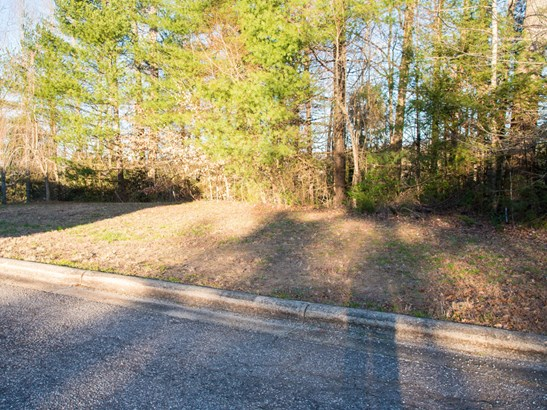 213  Eagle Point Drive, Brevard, NC - USA (photo 1)
