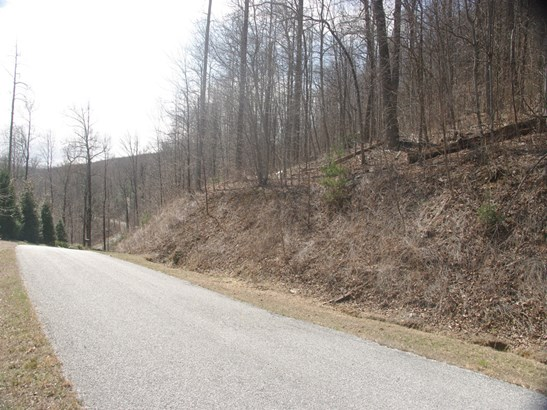 635  Eagle Ridge Road, Zirconia, NC - USA (photo 1)