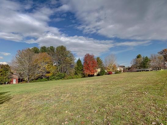 624 Harrell Drive, Lake Junaluska, NC - USA (photo 3)