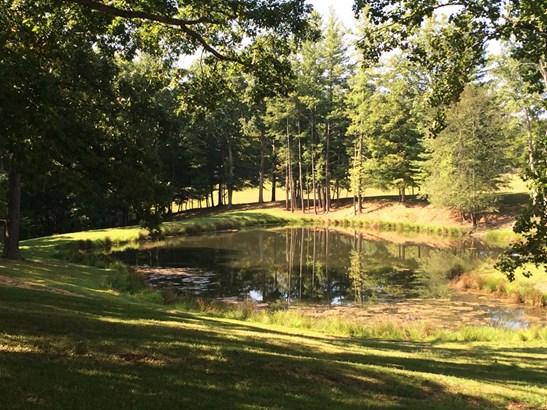 3.75 Acres Sheep Pasture Lane, Fletcher, NC - USA (photo 4)