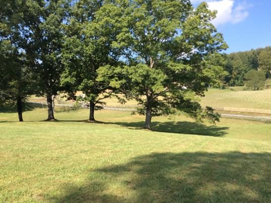 3.75 Acres Sheep Pasture Lane, Fletcher, NC - USA (photo 5)