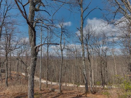 147 Bobcat Trail, Saluda, NC - USA (photo 2)
