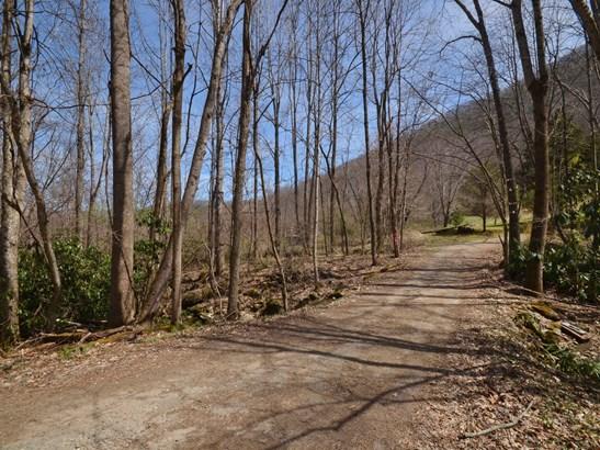 9999 Haw Branch Road, Barnardsville, NC - USA (photo 1)