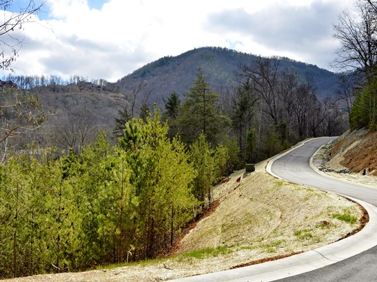 19  Eagles Pass Drive, Black Mountain, NC - USA (photo 1)