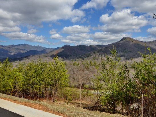 19  Eagles Pass Drive, Black Mountain, NC - USA (photo 3)