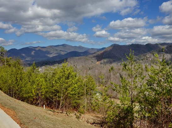 19  Eagles Pass Drive, Black Mountain, NC - USA (photo 4)