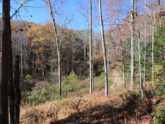 00  Erwin Lane, Waynesville, NC - USA (photo 2)