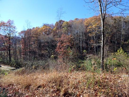00  Erwin Lane, Waynesville, NC - USA (photo 3)