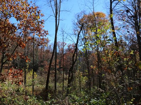 00  Erwin Lane, Waynesville, NC - USA (photo 4)