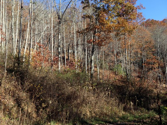 00  Erwin Lane, Waynesville, NC - USA (photo 5)