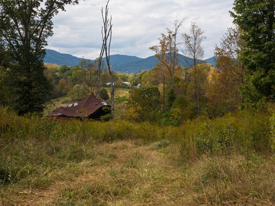 142 W Oakview Road, Asheville, NC - USA (photo 5)