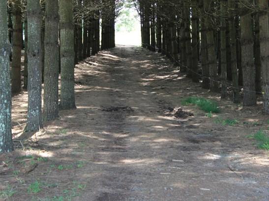 7214  Double Island Road, Burnsville, NC - USA (photo 3)