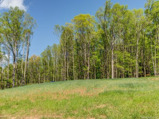 Lot 6  Powder Springs Trail, Arden, NC - USA (photo 5)