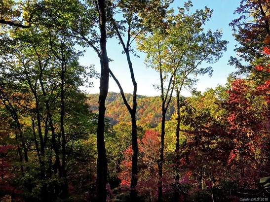 9999  Wild Rose Lane, Brevard, NC - USA (photo 2)