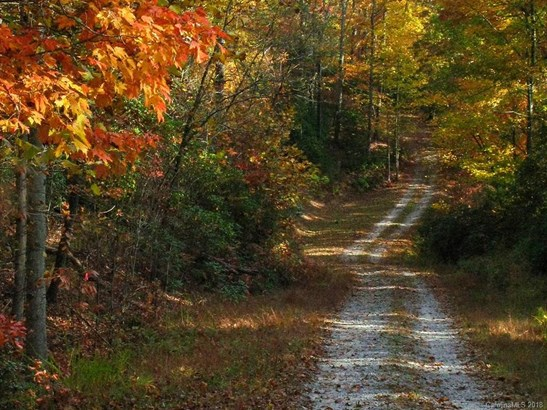 9999  Wild Rose Lane, Brevard, NC - USA (photo 5)