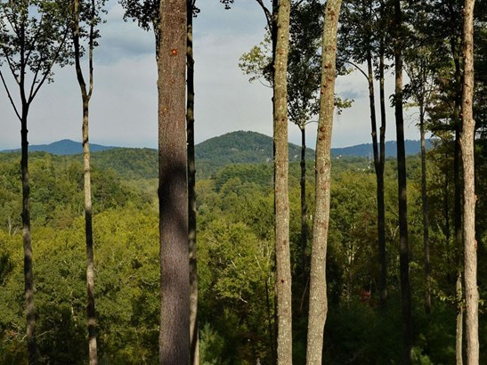 0  French Broad Overlook, Arden, NC - USA (photo 4)