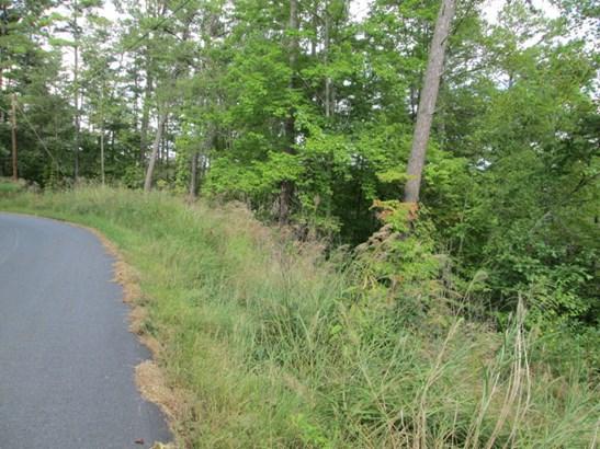 Lot #41 Quail Ridge Road, Mars Hill, NC - USA (photo 3)