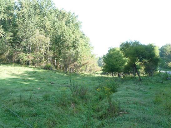 70  Whispering Pines (4.8 Ac.), Marshall, NC - USA (photo 1)