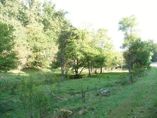 70  Whispering Pines (4.8 Ac.), Marshall, NC - USA (photo 3)