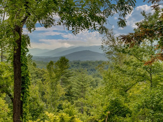 41 Old Camby Road, Asheville, NC - USA (photo 4)