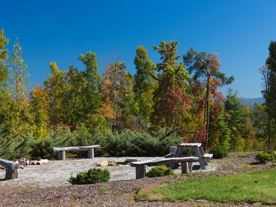 54  Long Tail Lane, Hendersonville, NC - USA (photo 4)