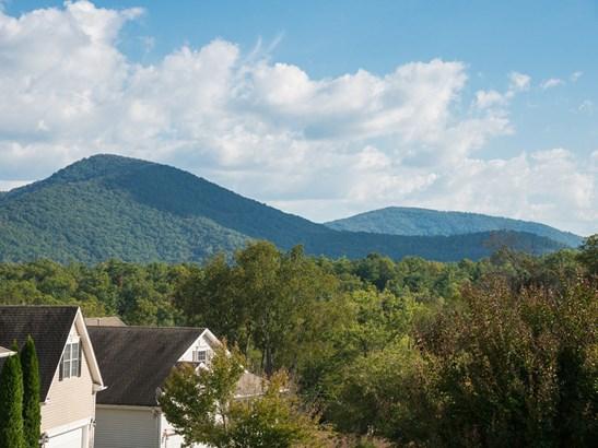 117  Willow Oak Drive, Asheville, NC - USA (photo 4)