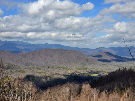 42  Turkey Trace Lane, Black Mountain, NC - USA (photo 5)