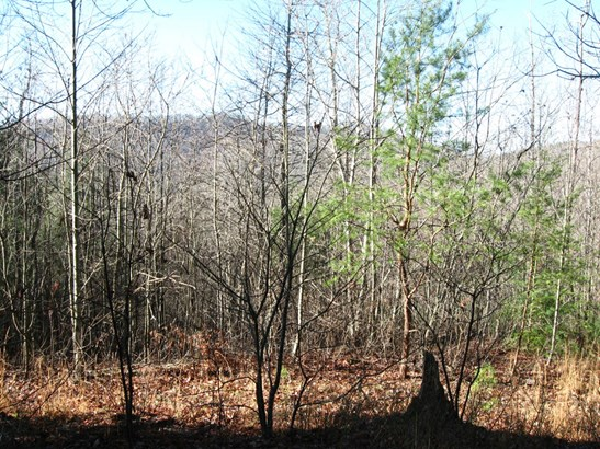 629 Pine Cone Trail, Marshall, NC - USA (photo 1)