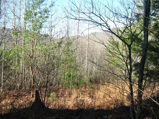 629 Pine Cone Trail, Marshall, NC - USA (photo 2)
