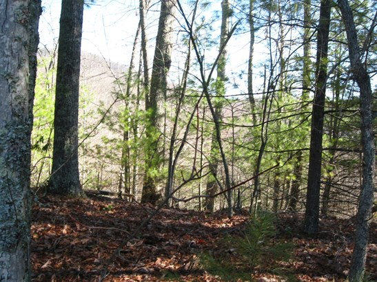 629 Pine Cone Trail, Marshall, NC - USA (photo 3)