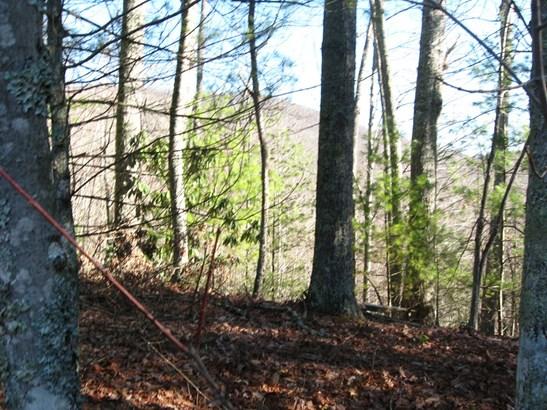 629 Pine Cone Trail, Marshall, NC - USA (photo 4)