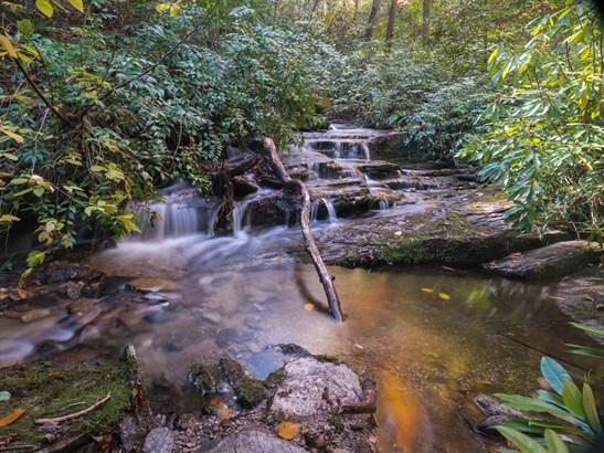 231  Firefly Lane, Pisgah Forest, NC - USA (photo 2)