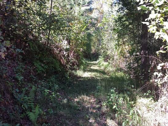 0  Ashe Loop Road, Sylva, NC - USA (photo 4)