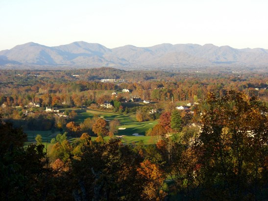 60  Courseview Drive, Weaverville, NC - USA (photo 3)