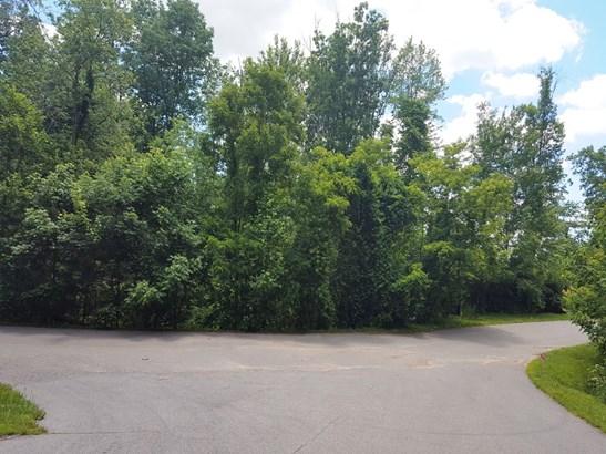 51  Leisure Lane, Swannanoa, NC - USA (photo 3)