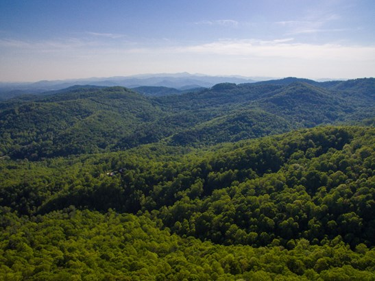182 +/- Acres Bob Barnwell Road, Asheville, NC - USA (photo 1)
