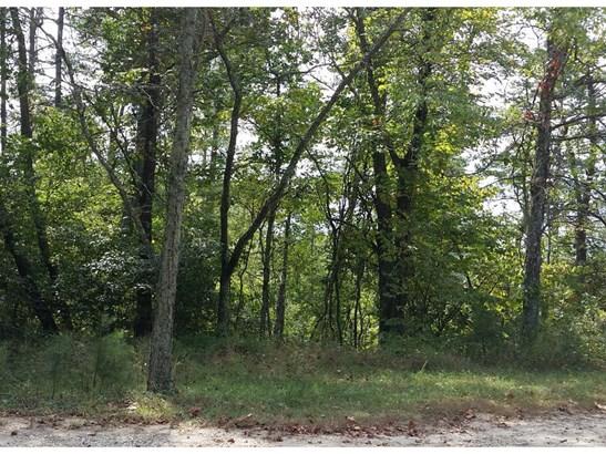 2176  Bear Creek Road, Leicester, NC - USA (photo 1)