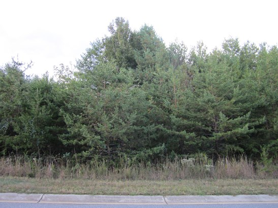 Lot 2  Fair Oak Drive, Morganton, NC - USA (photo 2)