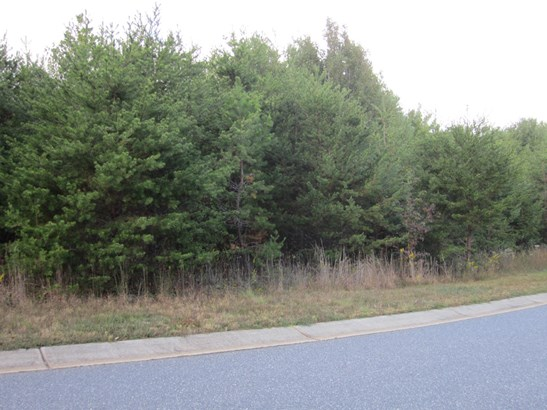 Lot 2  Fair Oak Drive, Morganton, NC - USA (photo 3)