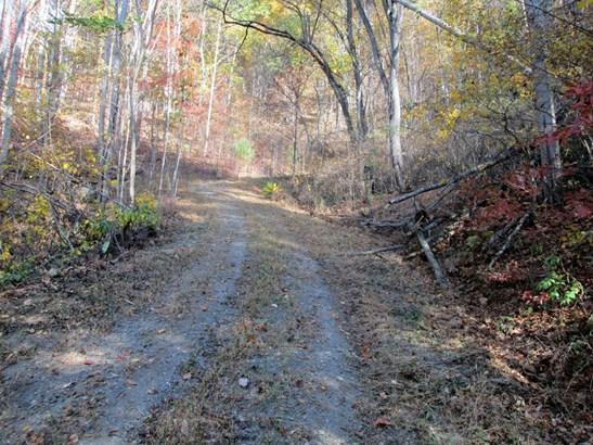 9999 Jordan Branch Road, Mars Hill, NC - USA (photo 5)