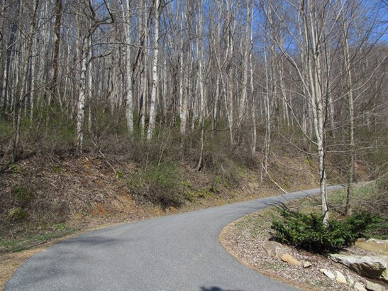 Lot 48  Forest Valley Road, Sylva, NC - USA (photo 2)