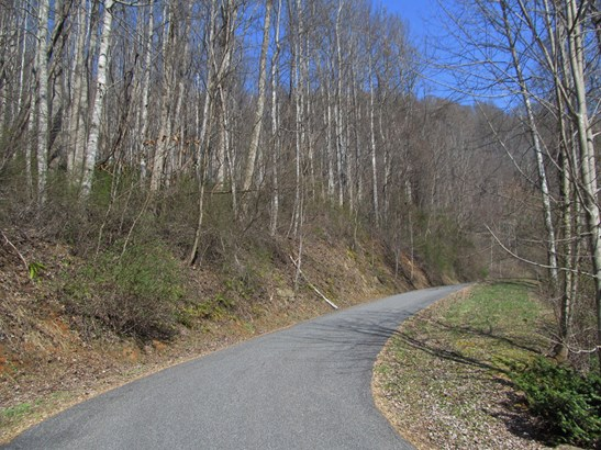 Lot 48  Forest Valley Road, Sylva, NC - USA (photo 3)