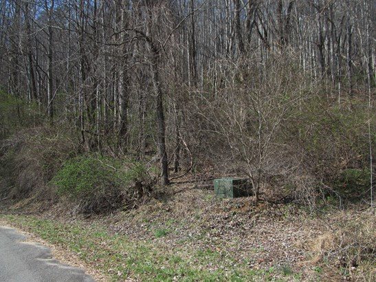 Lot 48  Forest Valley Road, Sylva, NC - USA (photo 4)