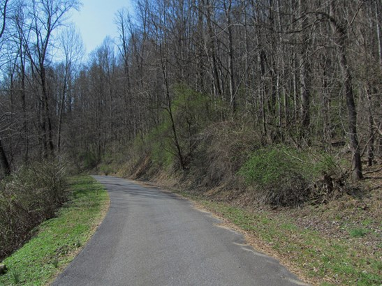Lot 48  Forest Valley Road, Sylva, NC - USA (photo 5)