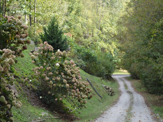 58  Lonesome Dove Lane, Whittier, NC - USA (photo 2)