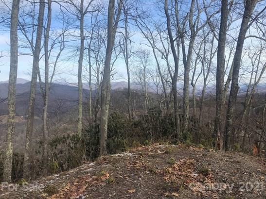 C-63  Natsi Trail, Maggie Valley, NC - USA (photo 2)